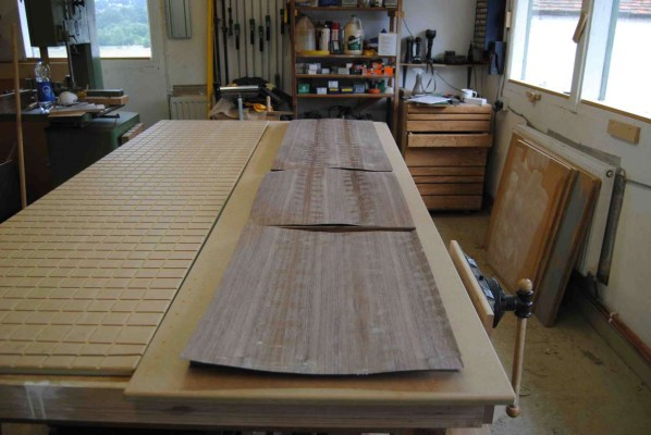 Dry run - panels and their veneers