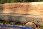 Flamed beech board fresh sawn on chainsaw mill