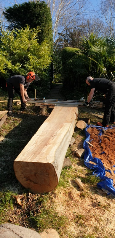 chainsaw milling flamed beech log